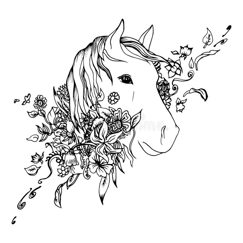 Abstract graphic horse head, print. Black and white horse head isolated. Engraving sketch. Abstract vector horse head in the flowers. Print for t-shirt. Wild stock illustration