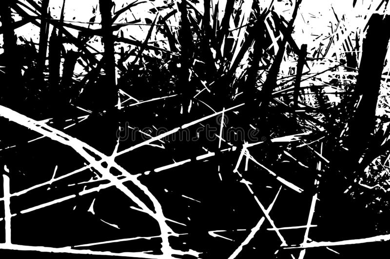 Abstract grass background. Monochrome texture of black and white tones. royalty free illustration