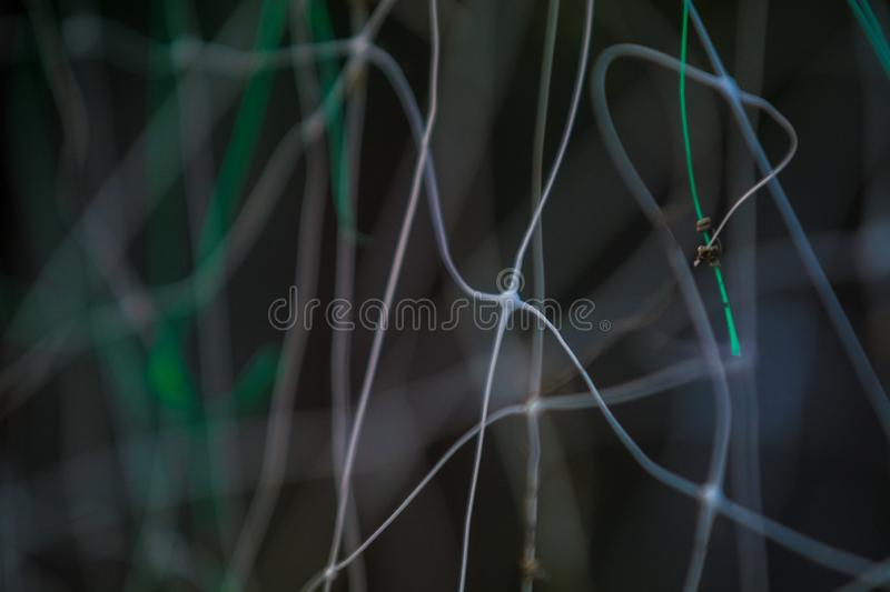 Abstract gray-green background from plastic pro-wolves with the chaotic, indistinct and uneven, twirled lines with bokeh. stock image