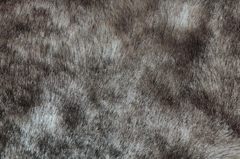 Abstract Gray Mink Fur Background Texture Stock Photos