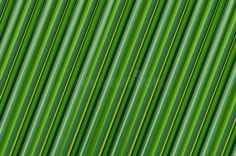 Abstract green background. texture banana leaf eco natural pattern design vector illustration