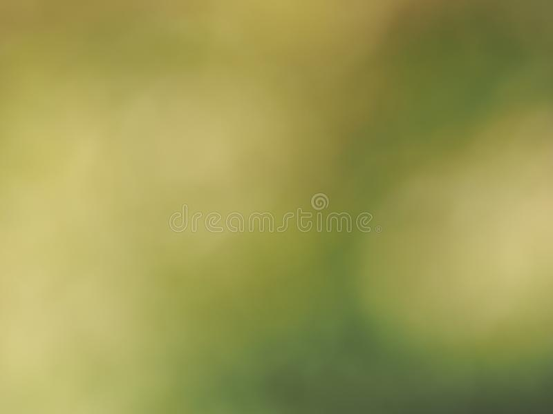 abstract green blur background stock image