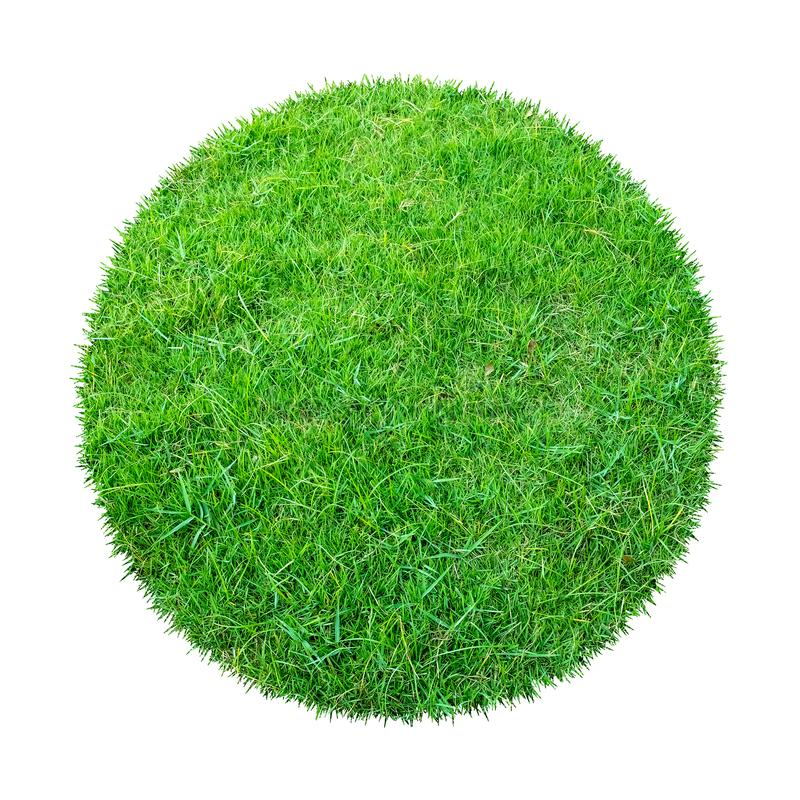 Abstract green grass texture for background. Circle green grass pattern isolated on white background with clipping path stock photography
