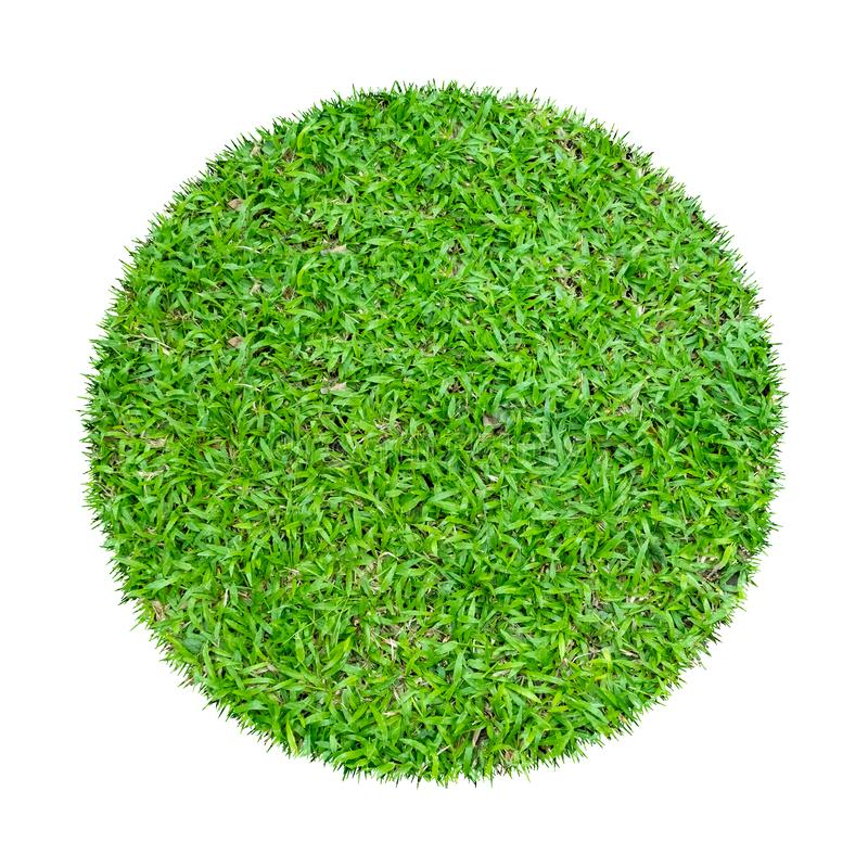 Abstract green grass texture for background. Circle green grass pattern isolated on a white background stock photography