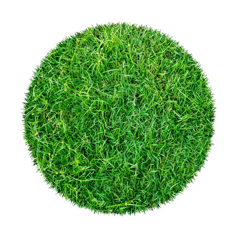 Abstract green grass texture for background. Circle green grass pattern isolated on a white background royalty free stock photo