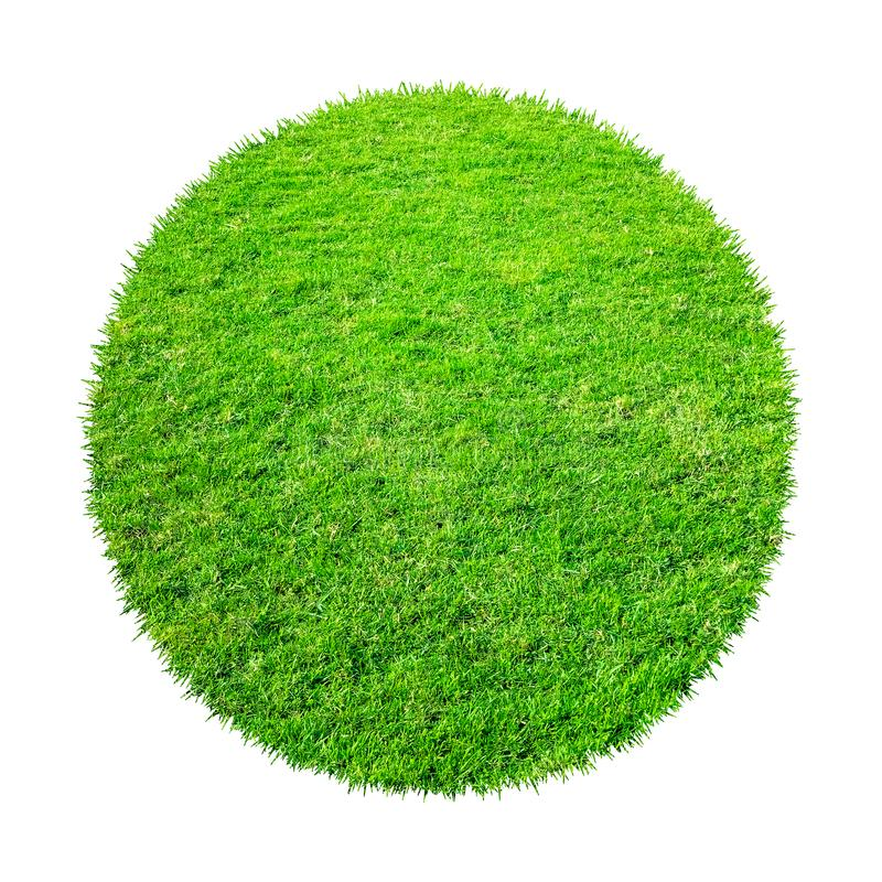 Abstract green grass texture for background. Circle green grass pattern isolated on a white background stock image