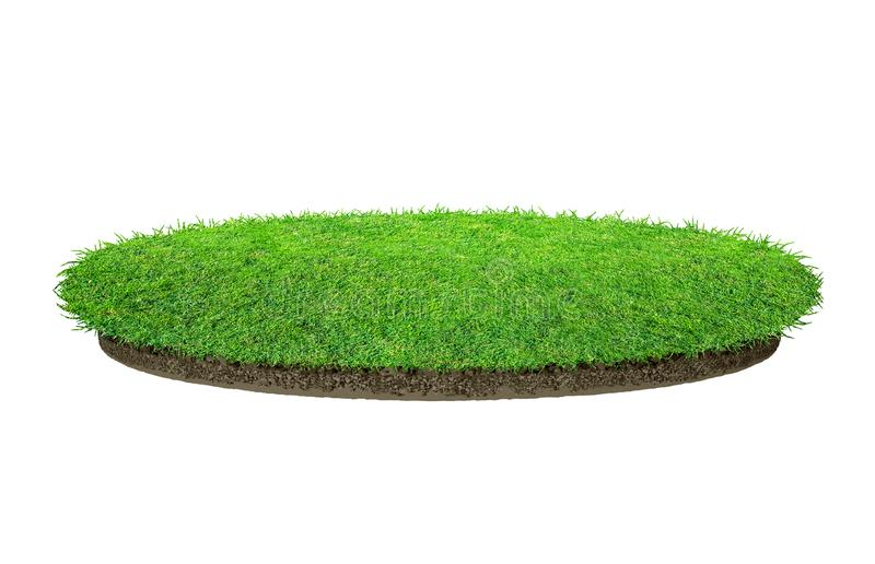 Abstract green grass texture for background. Circle green grass pattern isolated on a white background royalty free stock photography