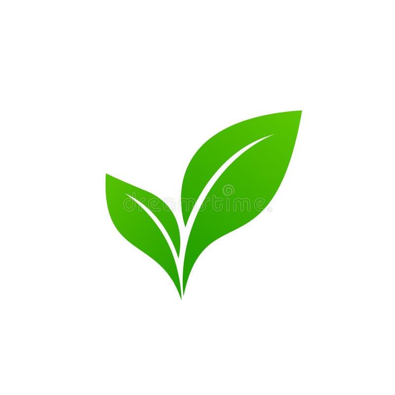 Abstract green leaf logo icon vector design. Ecology icon set. Eco icon. stock illustration
