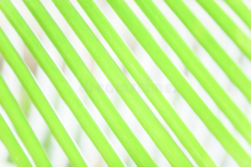 Abstract of green palm leaves on green palm leaves blur backgrounds, art shape and lines of leaves stock image