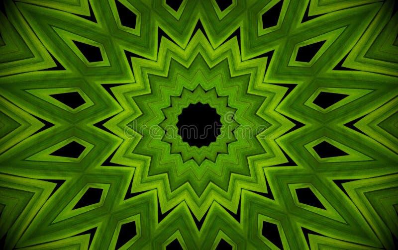 Abstract greenery background, palm leaves with kaleidoscope effect, mandala flora geometric pattern. stock illustration