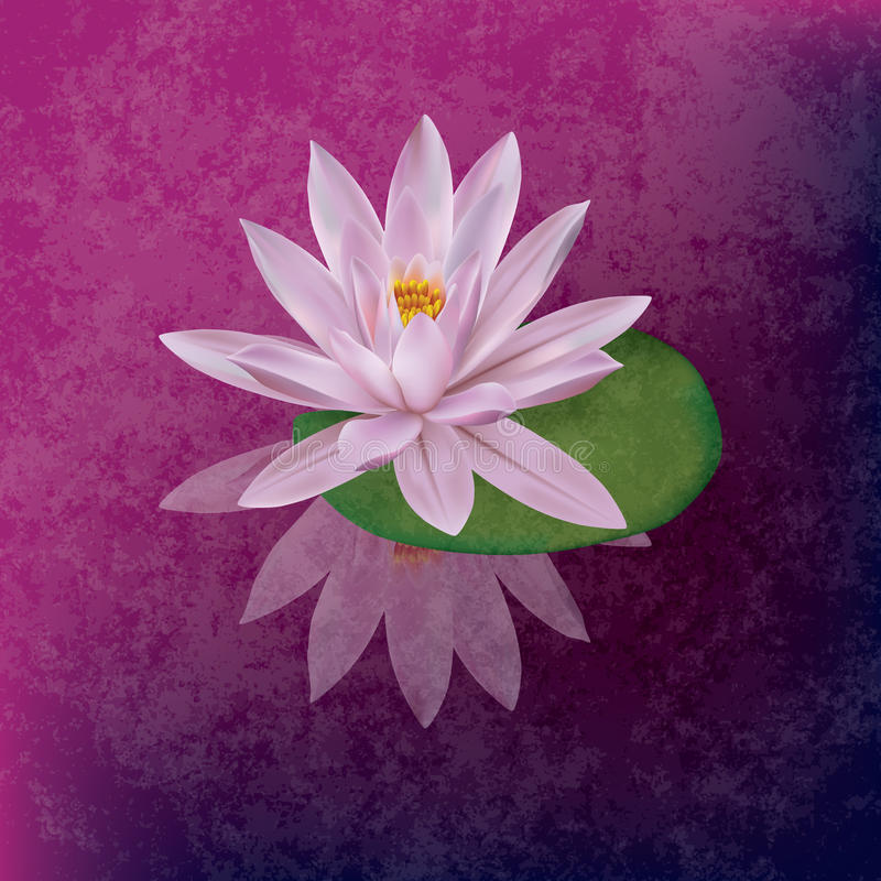 Abstract grunge illustration with lotus royalty free illustration