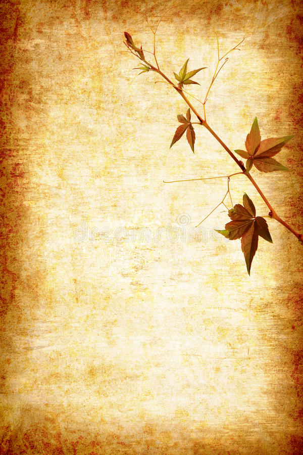 Abstract grunge texture background stock images