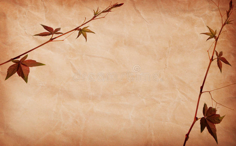 Download Abstract Grunge Texture Background With Leafs Stock Photo - Image: 10758966