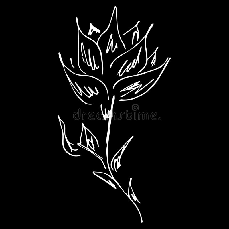 Abstract hand drawn lotus flower isolated on black background. Vector illustration. Outline sketch. Lotus logo royalty free illustration
