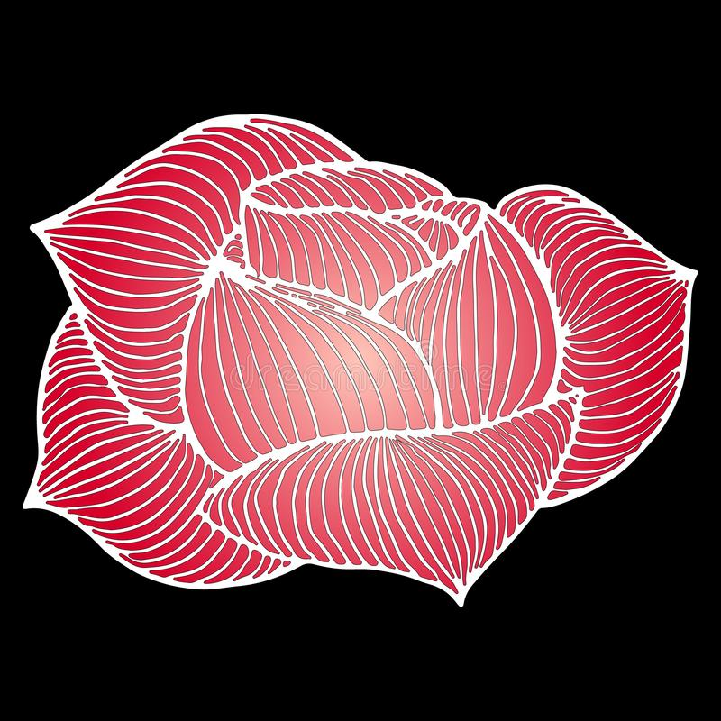 Abstract hand drawn pink rose flower isolated on black background. Vector illustration. Line art. Sketch.  royalty free stock image