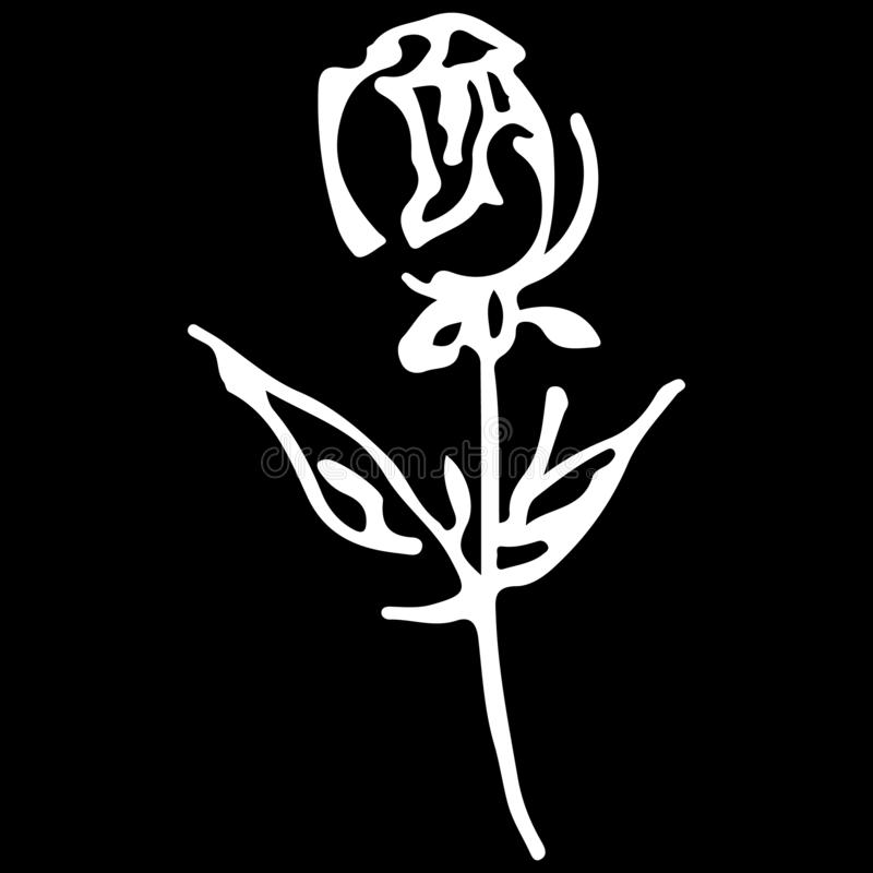 Abstract hand drawn rose flower isolated on black background. Rose flower  outline icon. Line art. Close up royalty free illustration