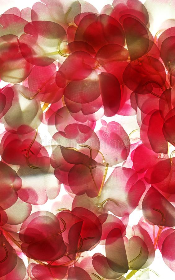 Abstract  horizontal background - fabric flowers in transparency royalty free stock photos