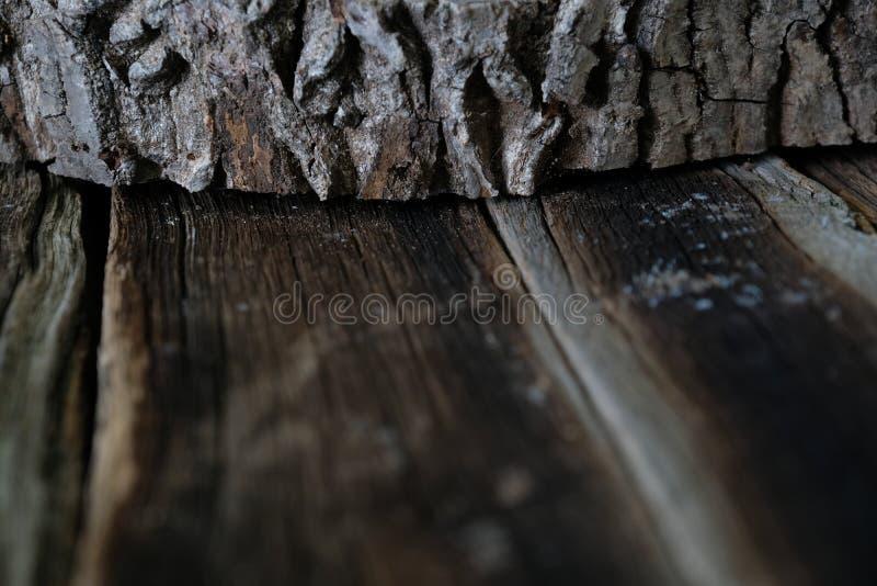 Abstract Houten textuurontwerp stock fotografie