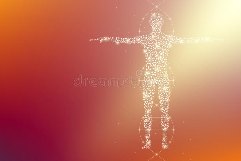 Abstract human body with molecules DNA. Medicine, science and technology stock illustration