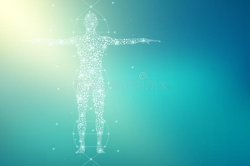 Abstract human body with molecules DNA. Medicine, science and technology concept. Illustration. Abstract human body with molecules DNA. Medicine, science and royalty free illustration