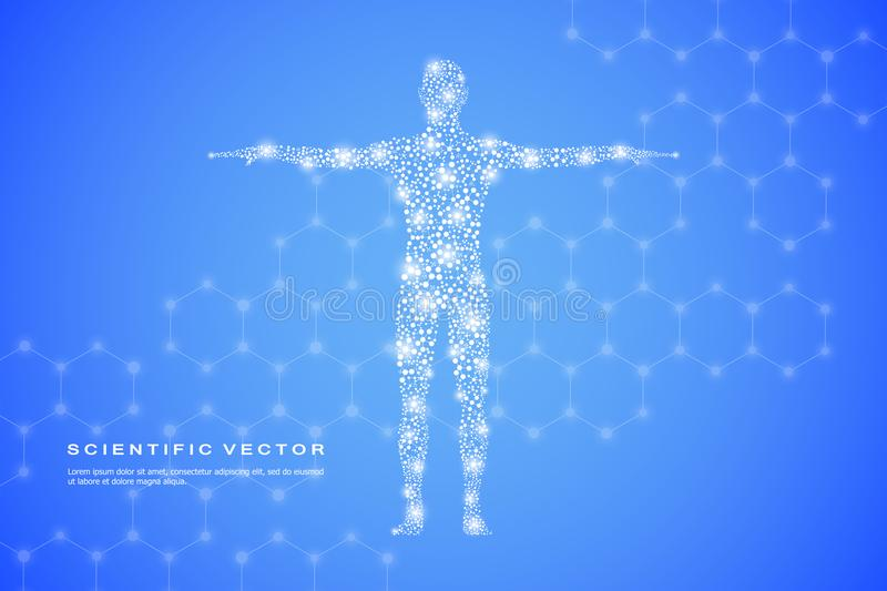 Abstract human body with molecules DNA. Medicine, science and technology concept. Vector illustration. vector illustration