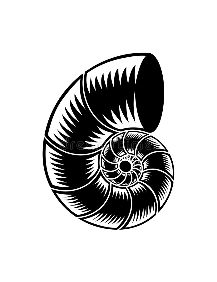Abstract illustrated spiral. An abstract, black and white vectored illustration of a spiral figure resembling a nautilus seashell or spiraling pipe vector illustration