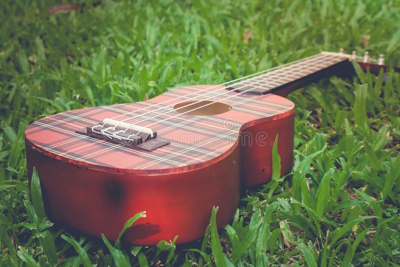 Abstract image close up of musical instrument ukulele guitar on green grass in vintage style. Selective focus stock photos