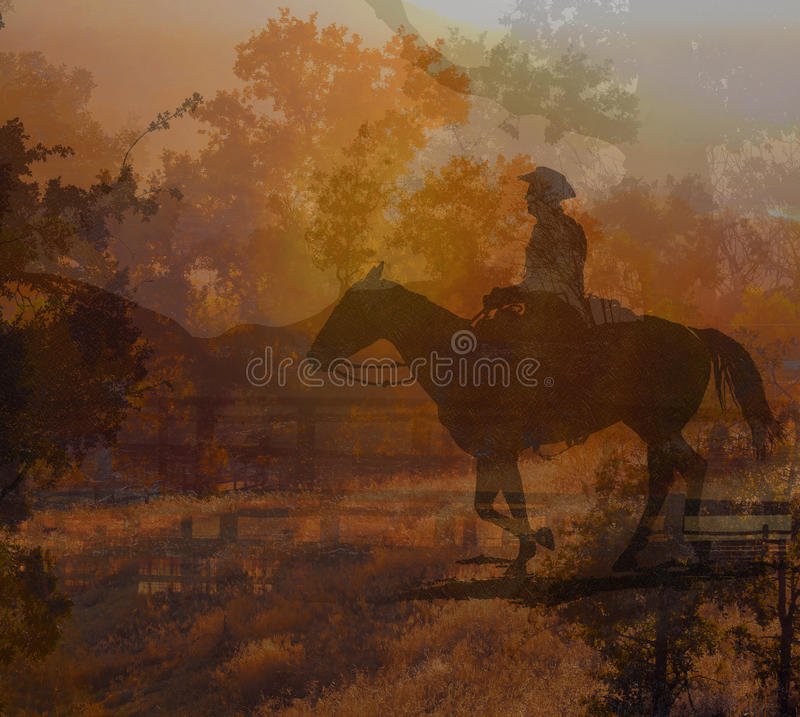 Cowboy riding on a horse IV. royalty free stock photography