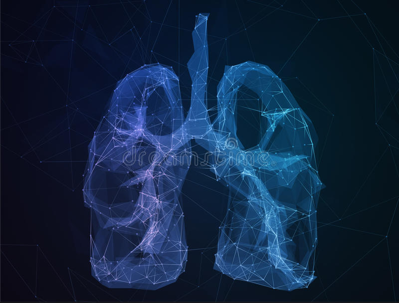 The abstract image human lungs in form of lines stock image