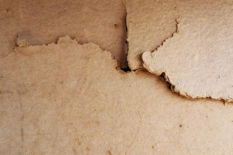Abstract image for old wood background, decay, blank surface, copy area royalty free stock photo