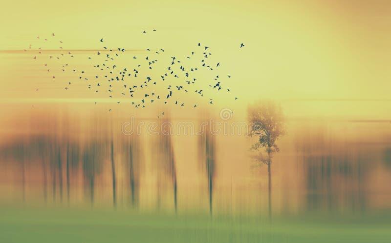 Abstract landschap met bomen en vogels in geel en groen en oranje royalty-vrije stock afbeeldingen