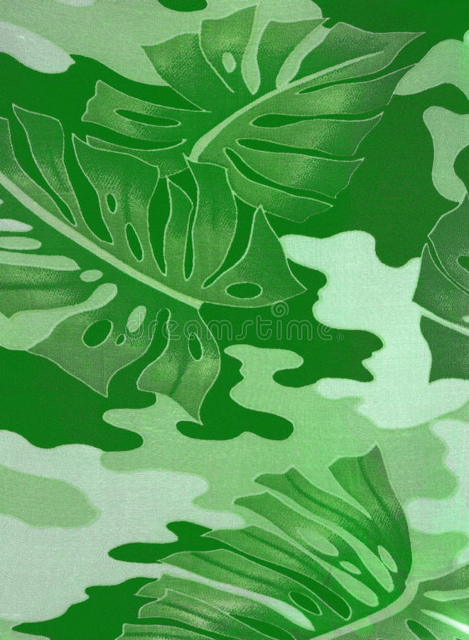 Download Abstract Leaves Of Green Rubber-plant Stock Photo - Image: 19938534