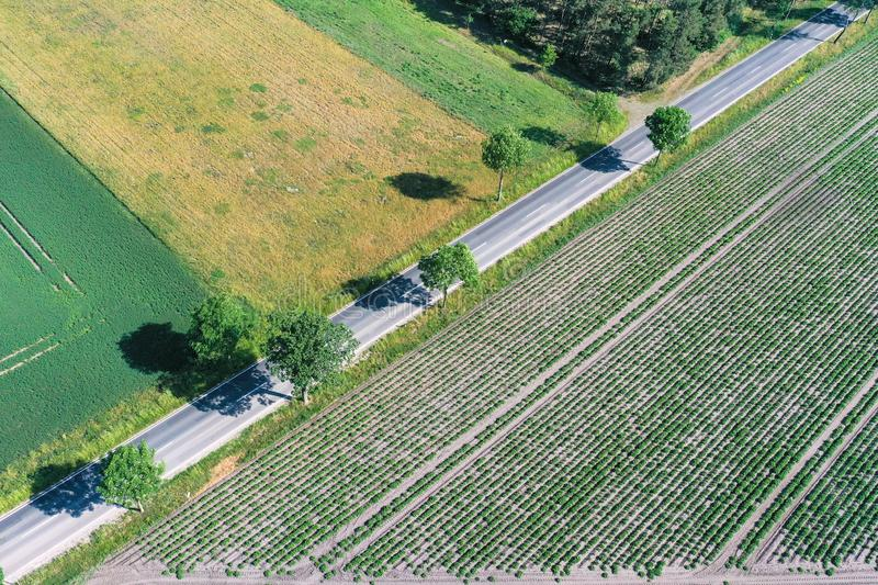 Abstract looking aerial view of an asphalted country road running diagonally through the picture between agricultural areas and stock images