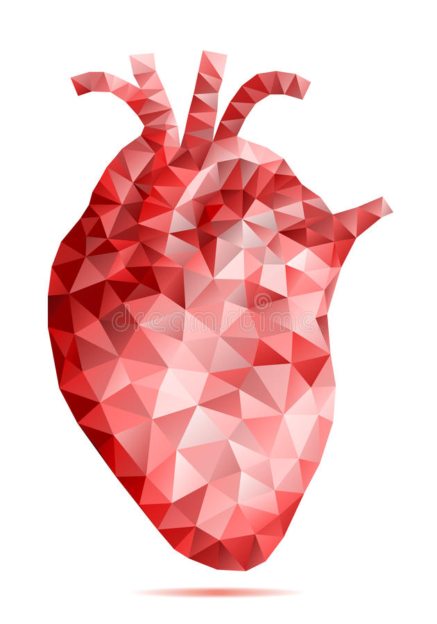 Abstract low poly human heart, vector vector illustration