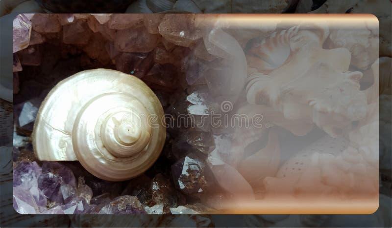 Abstract malplaatje overzeese shell als achtergrond voor website, abstract het malplaatjeontwerp van de informatiegrafiek stock afbeeldingen