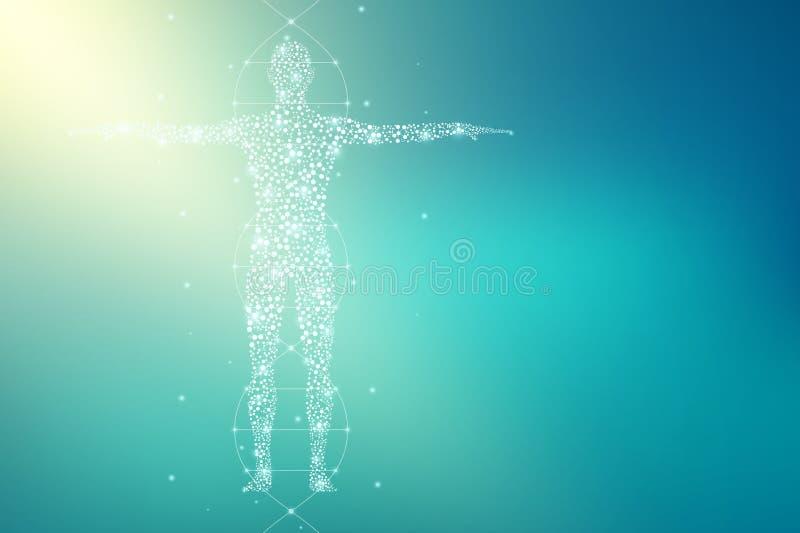 Abstract menselijk lichaam met moleculesdna Geneeskunde, wetenschaps en technologieconcept Illustratie royalty-vrije illustratie