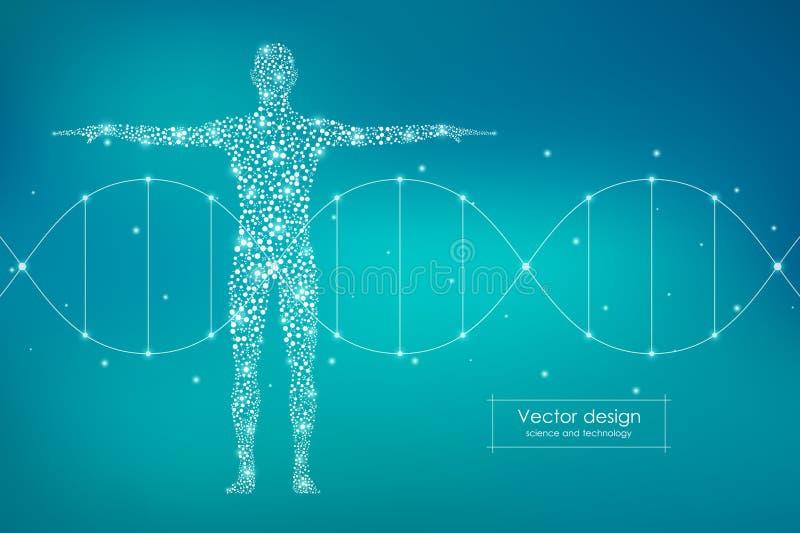 Abstract menselijk lichaam met moleculesdna Geneeskunde, wetenschaps en technologieconcept Vector illustratie stock illustratie