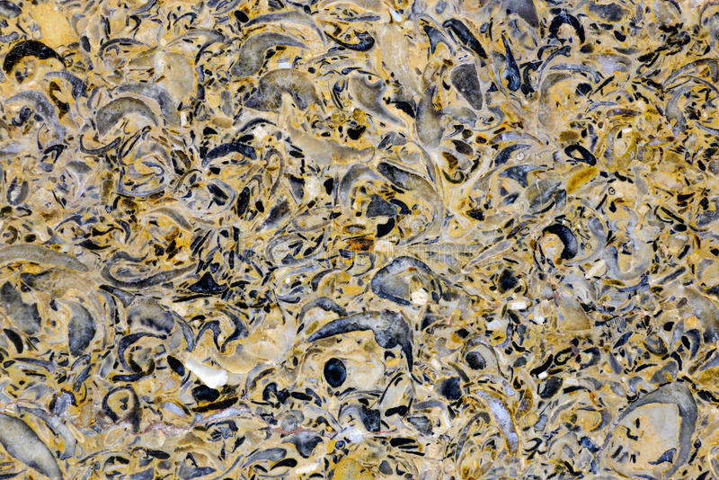 Abstract mineral texture. Backgrounds and textures: limestone, surface of beautiful yellow-grey decorative stone, abstract pattern of cracks, spots and stains royalty free stock images