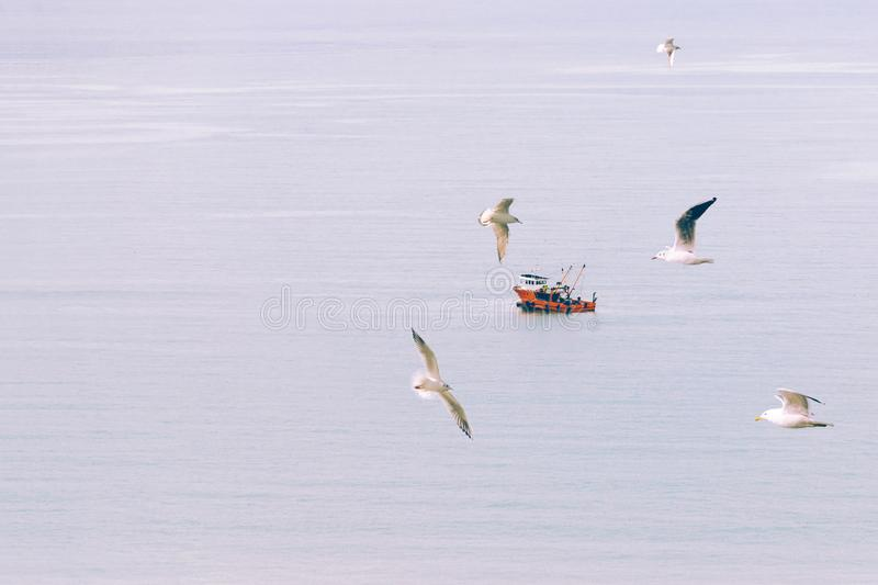 Abstract, minimal, surreal background - small boat sails quietly in the middle of sea, in the foreground flying seagulls. Toned in soft pastel colors in stock photo