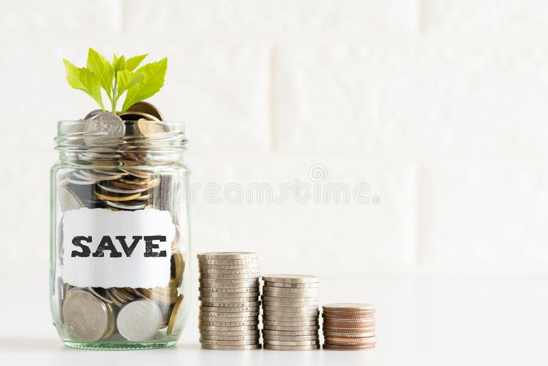 Abstract money saving small young tree with glass jar coins royalty free stock photo