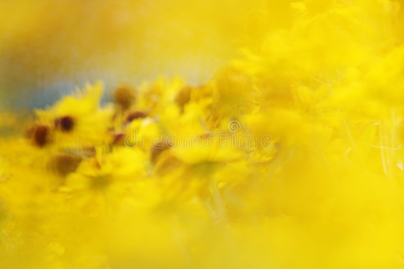 Abstract motion background. A photography of an abstract motion background stock image