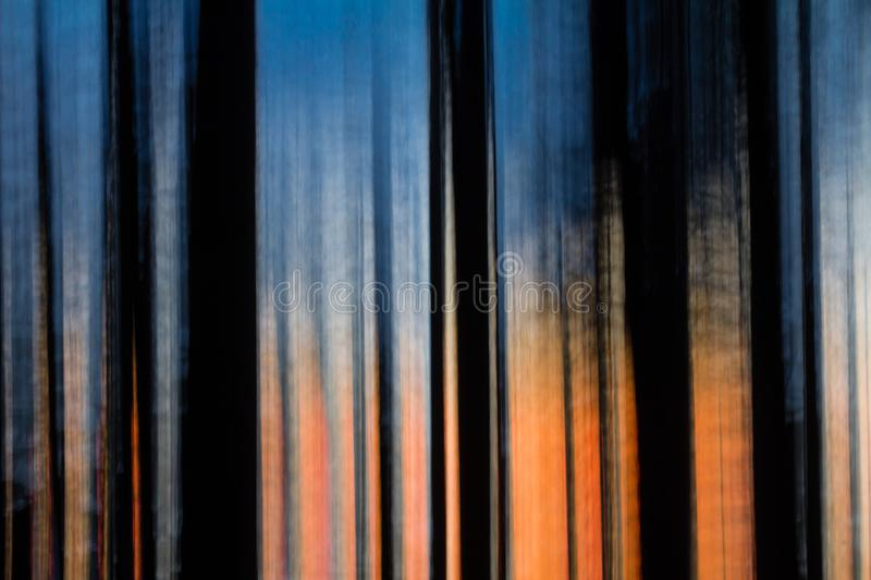 Abstract motion blurred trees at sunset royalty free stock image
