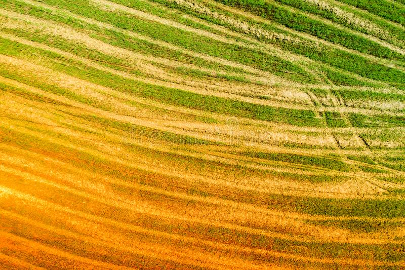 Abstract nature background created from the photo of the beveled field. Abstract natural background. Aerial view of the beveled fields. Gradient orange green stock photography