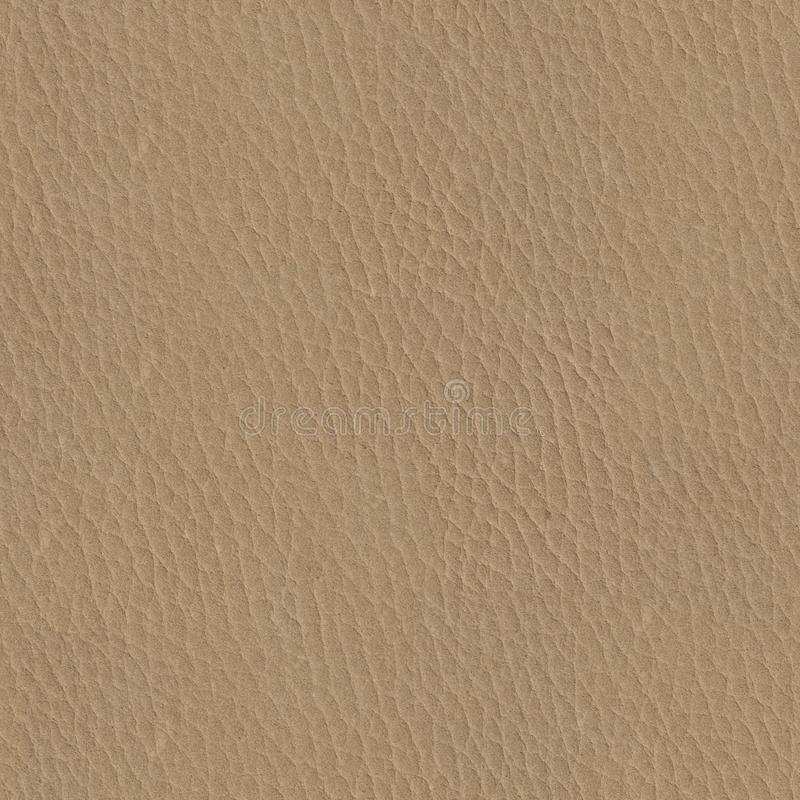 Abstract natural beige leather texture. Seamless square background, tile ready. High resolution photo royalty free stock images