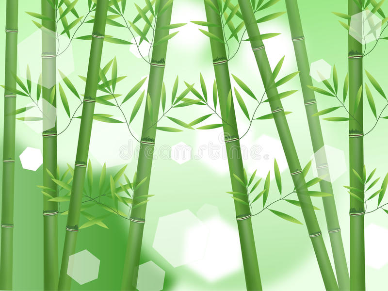 Abstract nature bamboo stock illustration