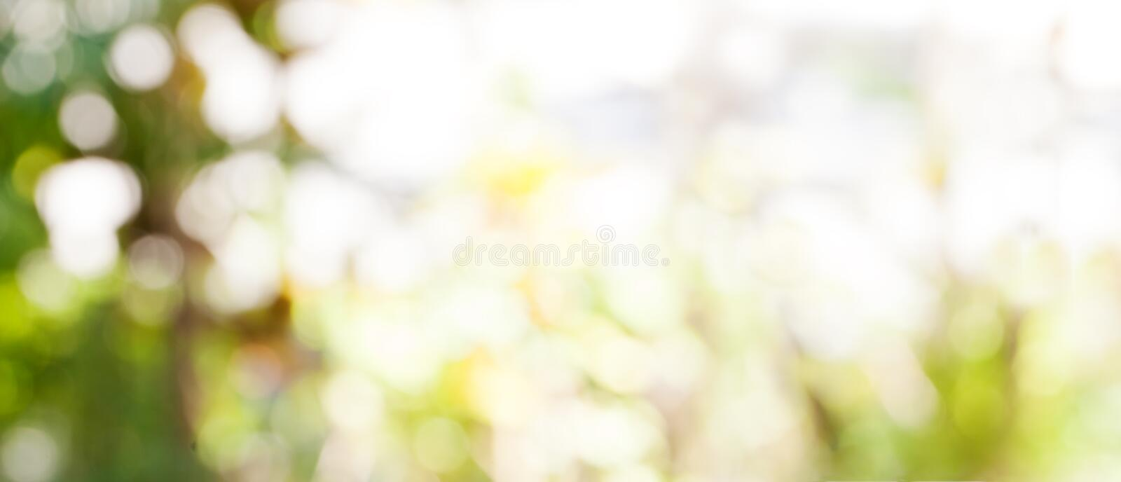 Abstract nature bokeh background Golden heaven light Blurred background from nature stock photography