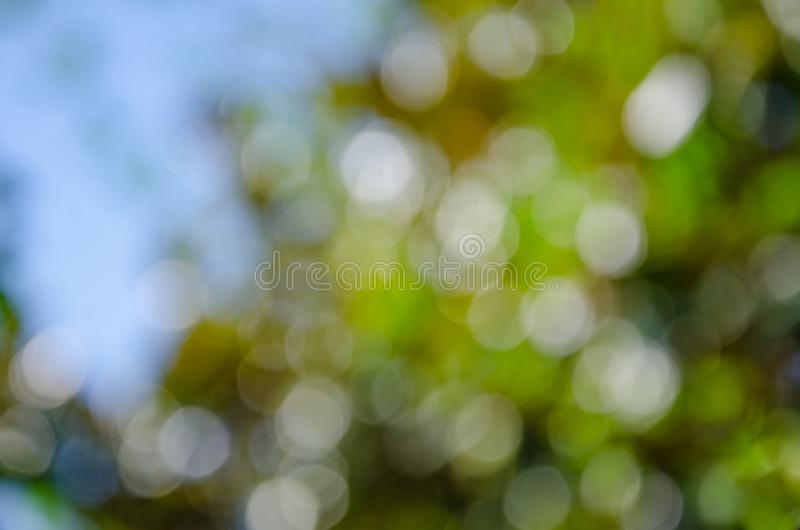 Abstract nature colorful background in bokeh style. Abstract bokeh nature background, green tree leaves and blue sky in bokeh style stock photography