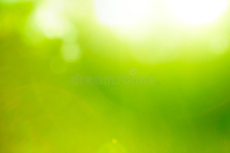 Abstract nature green background. Abstract nature green backgound (sun flare