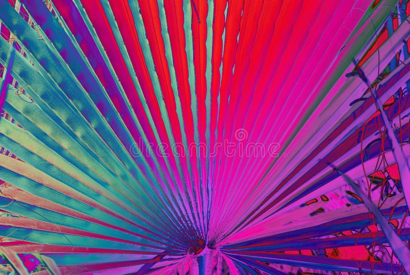 Abstract Neon Floral Background. stock photo