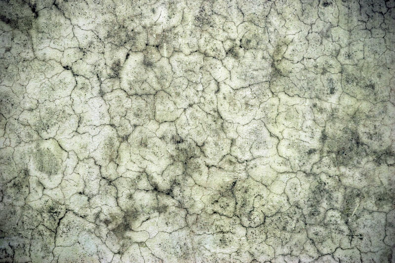 Abstract old grey stony wall texture. stock photography